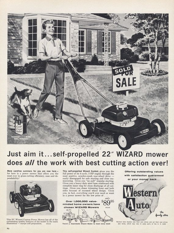 lawn boy briggs and stratton manual