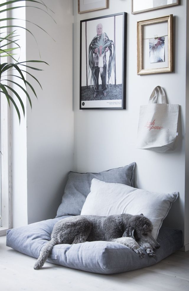 Daphne snoozing on a dog cushion / pillow from Kind - A lovely Finnish brand specialising in Sustainable Nordic style for furry friends.