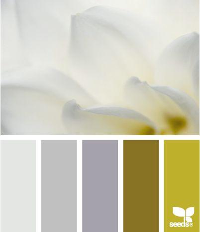 petal tonesColors Combos, Beats Www Design Seeds Com, Kitchens Colors, Bathroom Colors, Color Inspiration, Art Inspiration, Beats Wwwdesignseedscom, Colors Palettes, Colors Schemes