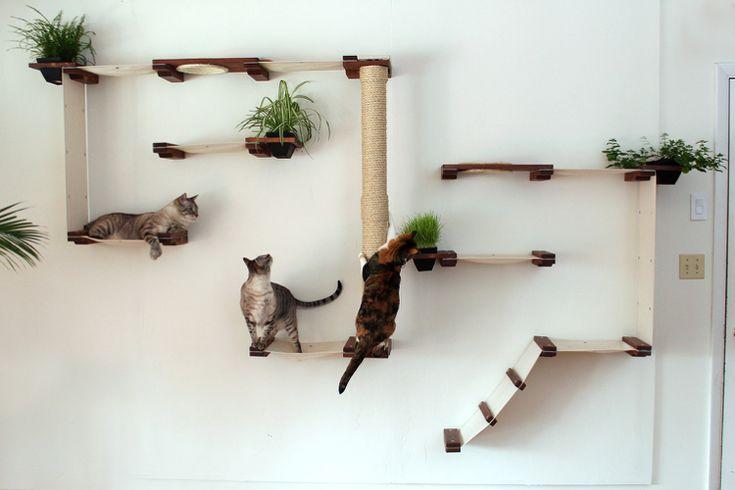 Bauen Sie Ihre eigene Kletterwand – Anleitungen, Bilder und Ideen   – Alles für Hund und Katze
