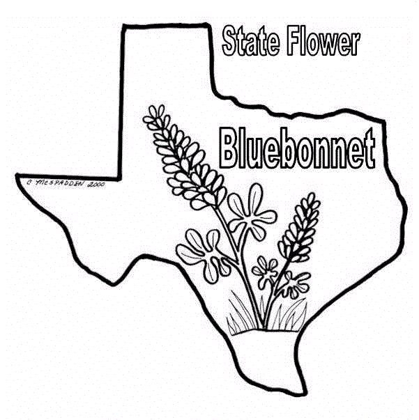 87 best ColoringTexas Coloring Book images on Pinterest Coloring