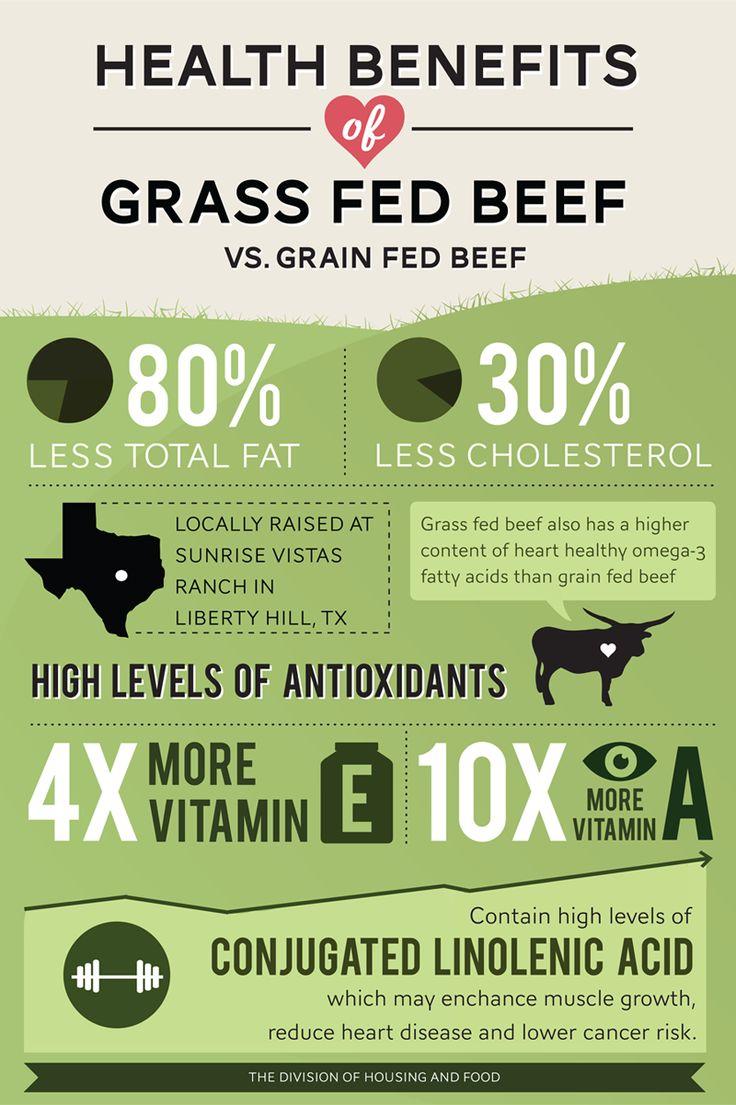 Buy organic beef - Health Benefits Of Grass Fed Beef Vs Grain Fed Beef