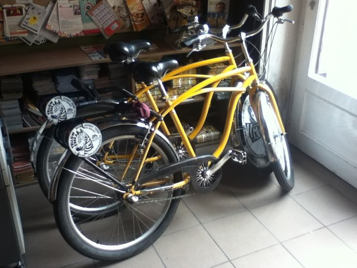 yellow zebra rent a bike in Budapest, Budapest And bookstore