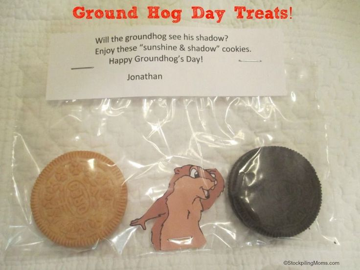 DIY Ground Hogs Day Treats!