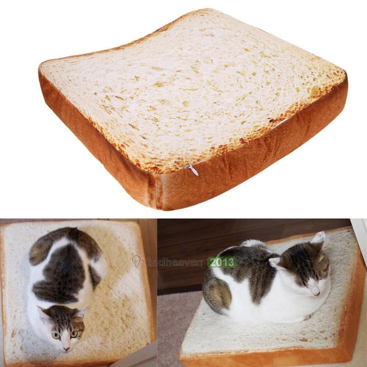 Toast Cushion Bread Shape Pet Mat Bed Sponge Pad For Dog Cat Kennel Cozy Soft at Banggood