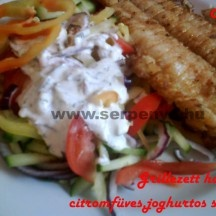 Grillezett harcsafilé citromfüves, joghurtos salátával - elkészítés, hozzávalók   Főétel - főétel receptek
