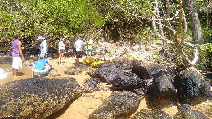 Seguimos visitando las áreas afectadas por el derrame de petróleo ocurrido el pasado 23 de abril en Trinidad.  Luego de Los Roques y La Tortuga ahora estamos en Paria para evidenciar los efectos del hidrocarburo sobre todo en las playas de anidación de tortugas marinas de la zona.  Hemos encontrado presencia de hidrocarburos en varias playas de Güiria también en Macuro y en otras playas hacia Boca de Dragón el extremo este del Estado Sucre incluso en Isla de Patos.  En la mayoría de las…