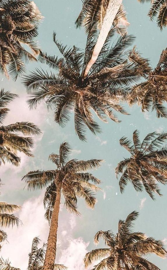 Cute Wallpapers Aesthetic Vintage Vintage Summer Holiday Aesthetic Aesthetic Backgrounds Aesthetic Wallpapers Beach Wall Collage