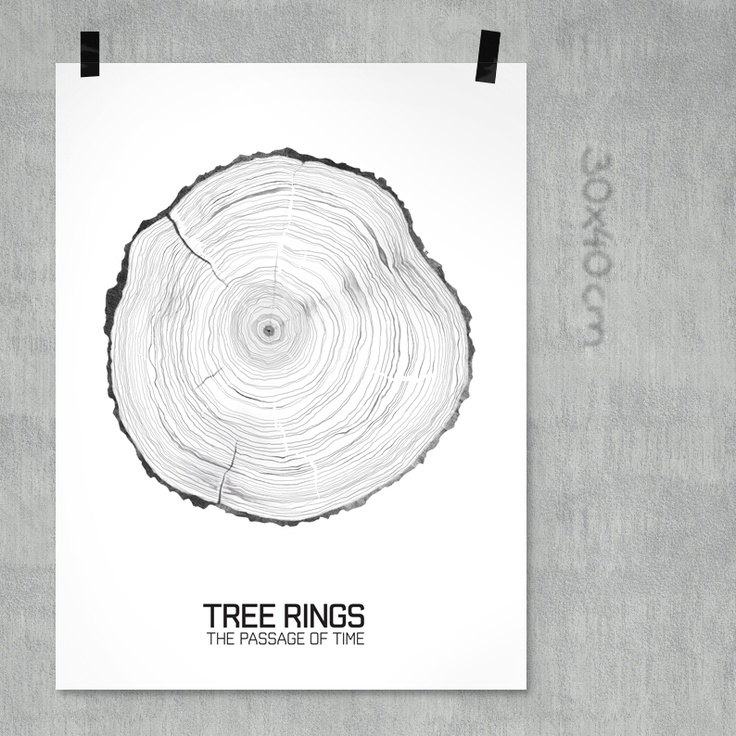 TREE RINGS 30x40cm på www.nordicdesigncollective.se