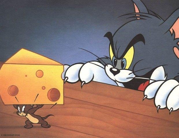Canal anuncia novos 'Tom & Jerry', 'Scooby-Doo' e 'Pernalonga' >> http://glo.bo/1dMvx04