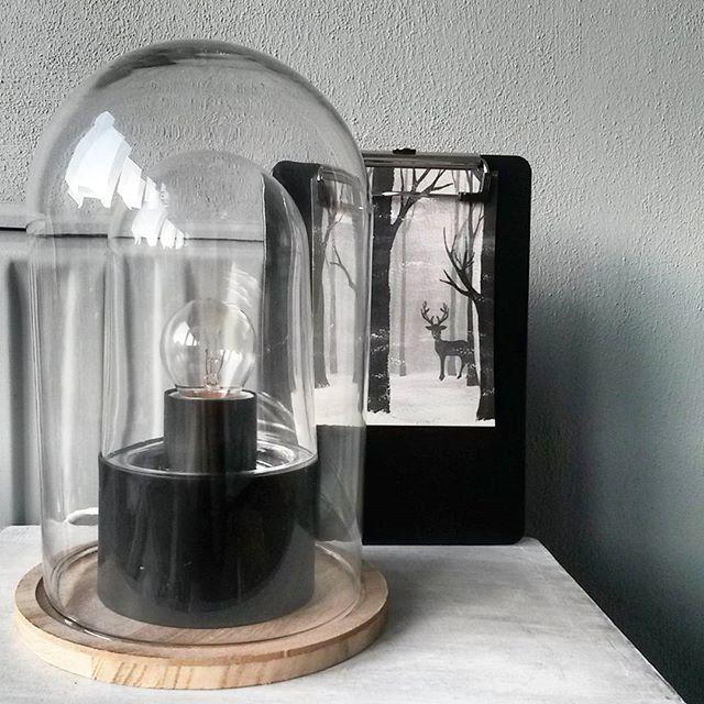 - LIGHT - En nog een close up van de lamp onder de #stolp . Met de mooie…