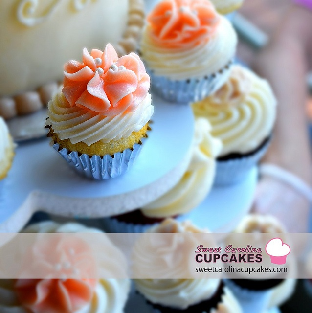 Sweet Carolina Cupcakes Hilton Head Island Sc