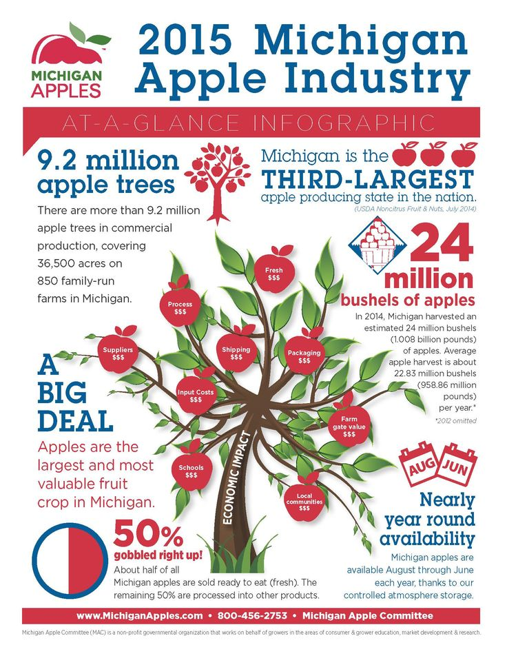 Why should you eat Michigan Apples? Take a look! Infographic from @MichiganApples