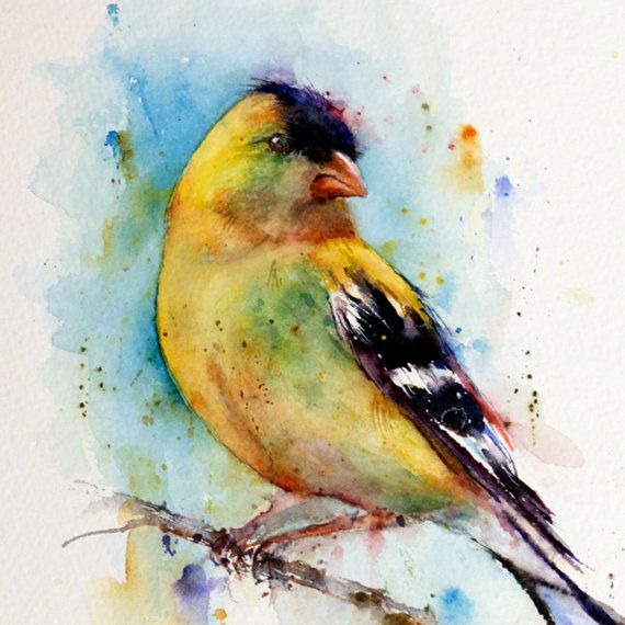 GOLFINCH Watercolor Bird Print by Dean Crouser. Saw one at my feeder this week. I love brilliant yellow.