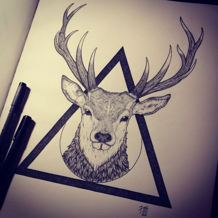 Kancha Magala - Instagram @_kancha_ Stag, geometry, dotwork