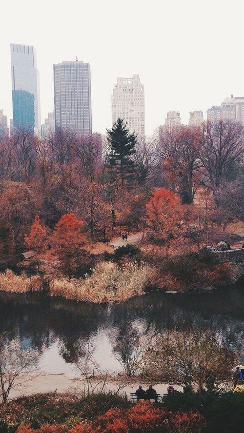 autumn kép