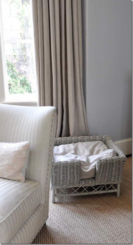 I love the grey blue walls with the beige linen drapes, the nail head detail and the little wicker dog bed painted grey