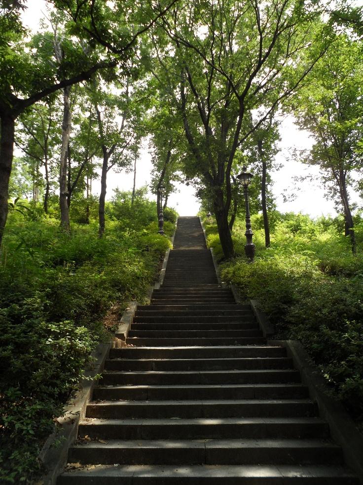 한국카메라 한국을 담다-6일차 Photo by LeeJuDot / Samsung MV800 / in GyeongJu HwangSung Park Detail : http://www.cyworld.com/LeeJuDot/3469085