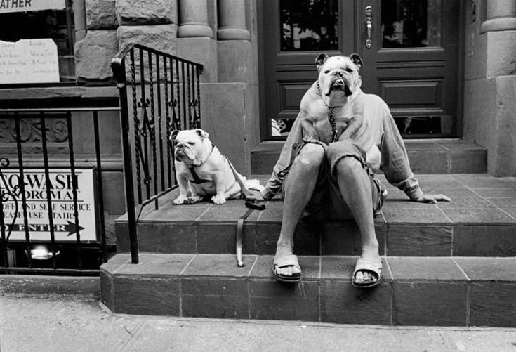 http://1.bp.blogspot.com/-fiDsctsEq-U/T5FIyLomdFI/AAAAAAAAABQ/VDZTj6BsZ9k/s1600/the_bulldog_lady.jpg