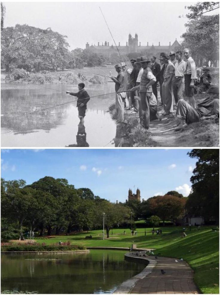 Victoria Park looking towards Sydney University 1930's and 2015. [1930's-State Library NSW>2015-Curt Flood. By Curt Flood]