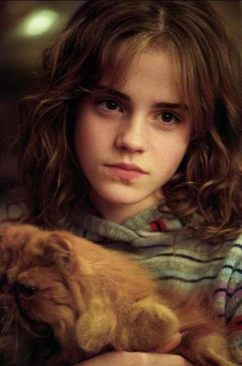 "Hermione  looks like she's thinking ""Don't you EVER touch Crookshanks again"""