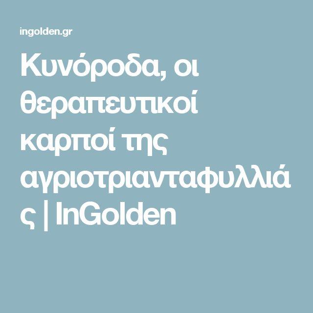 Κυνόροδα, οι θεραπευτικοί καρποί της αγριοτριανταφυλλιάς | InGolden