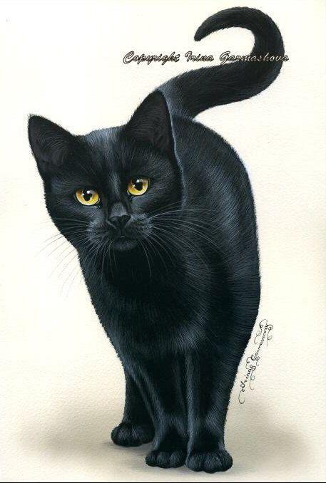 Print chat noir aux yeux d'ambre par Irina par irinagarmashova