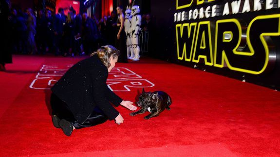 "Carrie Fisher & Ellen DeGeneres Hilariously Surprise...: Carrie Fisher & Ellen DeGeneres Hilariously Surprise ""Star Wars""… #CarrieFisher"