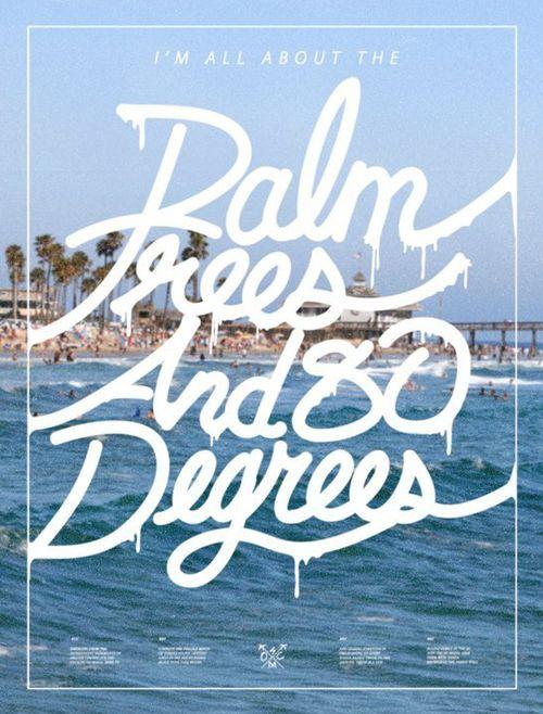 palm treesPalms Beach, San Diego, California Girls, Palms Trees, Palm Trees, Travel Tips, Summer, 80 Degre, Beach Life