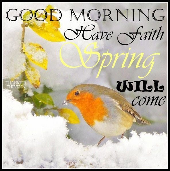 Good Morning Have Faith Spring Will Come morning good morning morning quotes good morning quotes cute good morning quotes positive good morning quotes inspirational good morning quotes beautiful good morning quotes winter good morning quotes