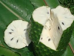 Guanábana Fruta Amazónica.