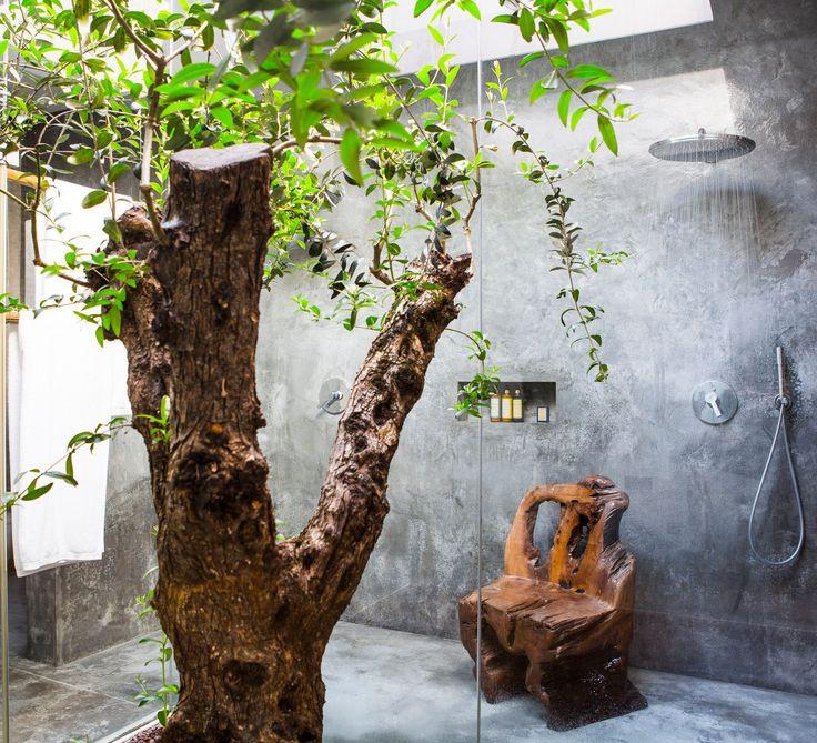 Areias do Seixo A dos Cunhados, Portugal outdoor tree plant wall house flower wood Garden stone cement