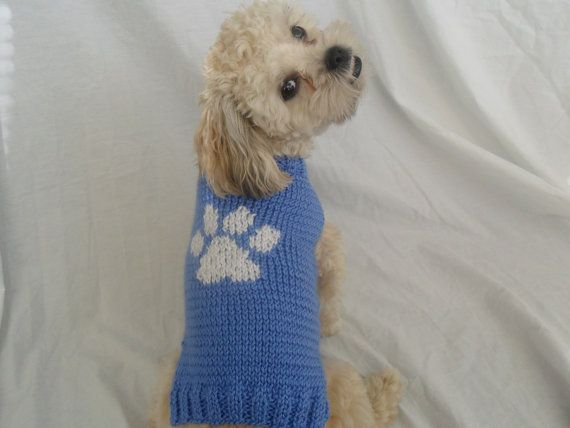 359 Best Images About Pet S Clothing On Pinterest