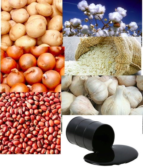 All Petroleum Products And Cotton Are The 2 Major Imports