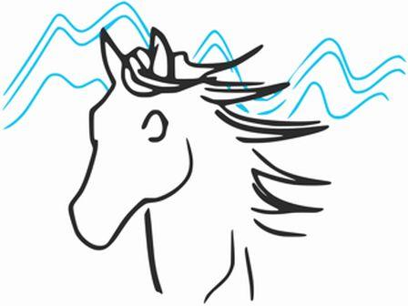 crinieres noires cheval ariege randonnee balade club debourrage merens