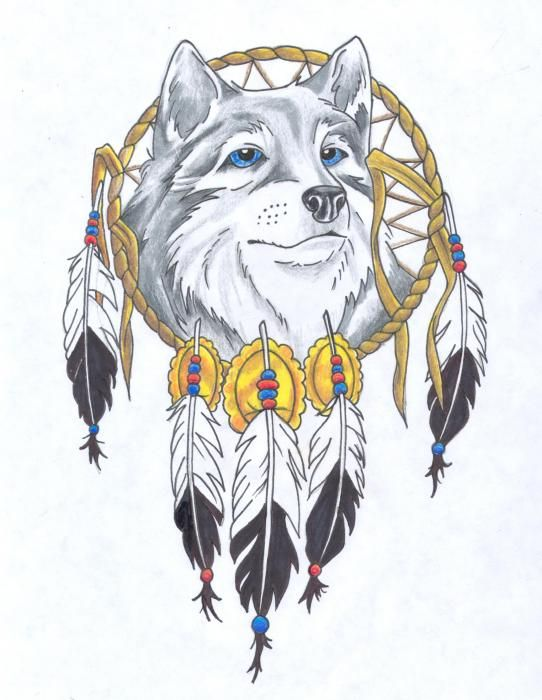 wolf dreamcatcher drawing related - photo #39