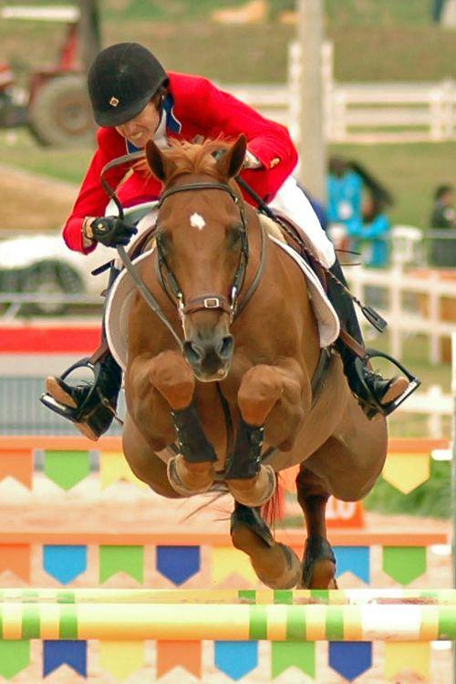 Cool shot of Laura Chapot and Little Big Man. #Equestrian Jumper