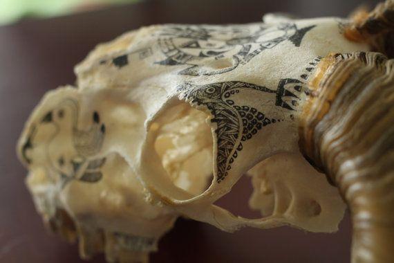 Ram skull,  hand painted.  #handpainted #painted #skull #realskull #ramskull #homedecor Mira este artículo en mi tienda de Etsy: https://www.etsy.com/es/listing/273850712/mr-sheep