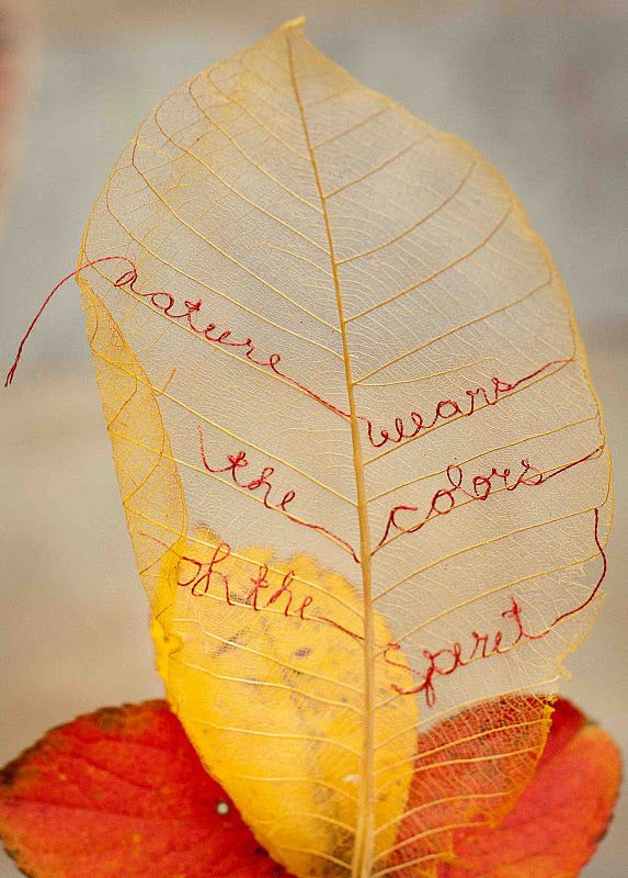 """DIY Embroidered Gold Leaf. Tutorial from The idea Room to make """"leaf skeletons"""", or you can buy them at your crafts store. Photo found at Susan Elliott's  Plays with Needles."""