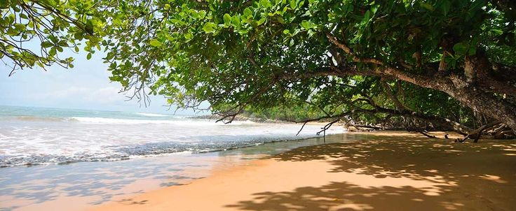 Overview of the top beaches in Ghana including beach review scores on natural beauty, accessibility, family friendliness, cleanliness, and more.