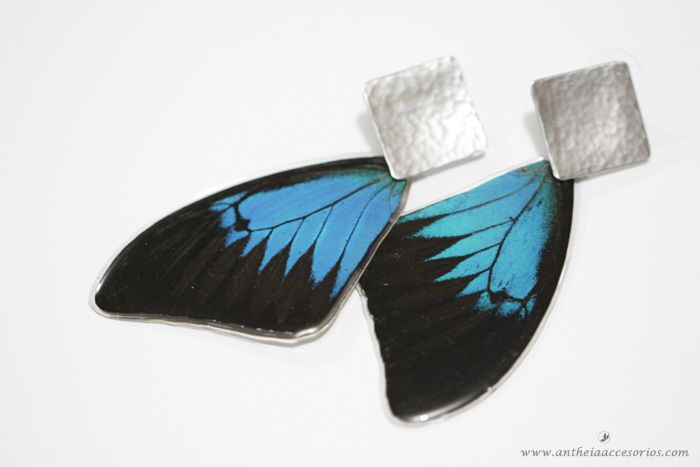 Ref: A7 - ARETES ACERO MARIPOSA 1Aretes con alas de mariposas recicladas.   Real butterfly wing earrings! Cruelty free jewelry. All of our butterflies come from certified breeders, no butterfly has been harmed to make our jewelry. By supporting legal certified breeder business all over the world, you are supporting and helping the conservation of our ecosystems, on average, for each butterfly we use in our products, two have been released to the wild by our breeders!