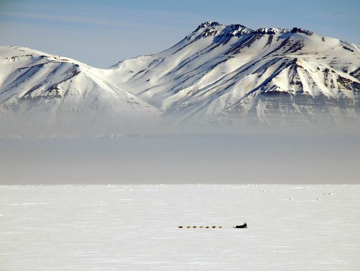 The Danish 'Sirius' dog patrol in Kong O Photo by Clive Johnson