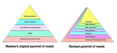 """Maslow's Pyramid gets a much needed renovation 