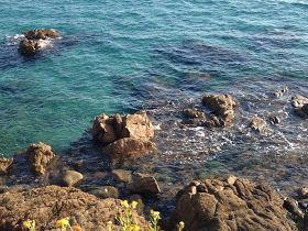Blog des vacances en Corse: Paillotes et restaurants pieds dans le sable à Ajaccio