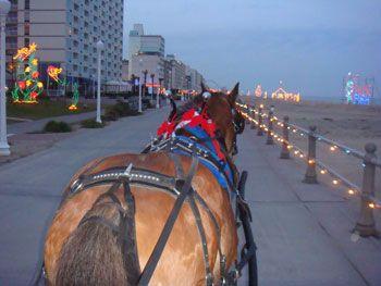 sea horse carriage company holiday lights boardwalk carriage rides virginia beach virginia - Christmas Lights Virginia Beach