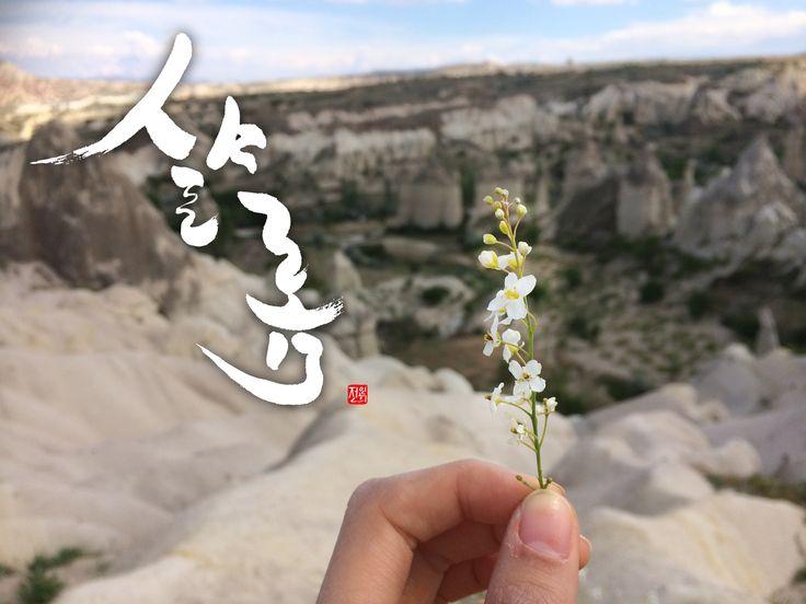 김도현 - 샬롬   Calligraphy by Inhee