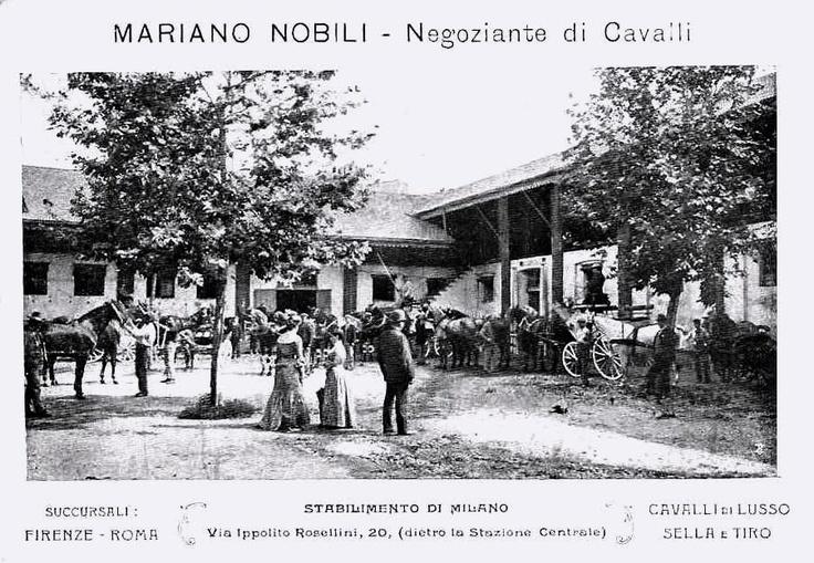 Negoziante di cavalli, via Rossellini 20