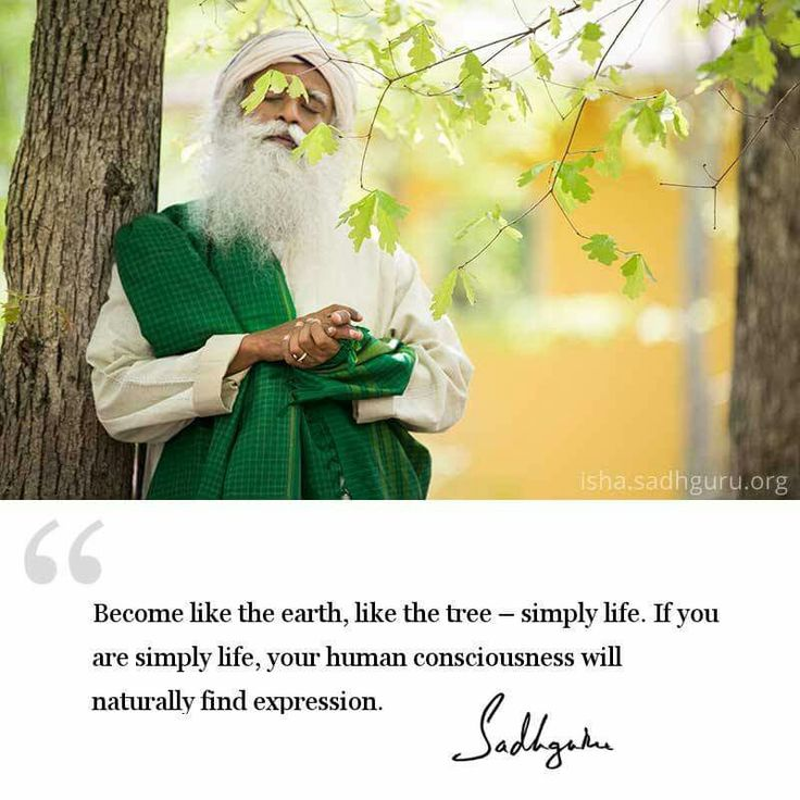 762 Best Images About SADHGURU On Pinterest