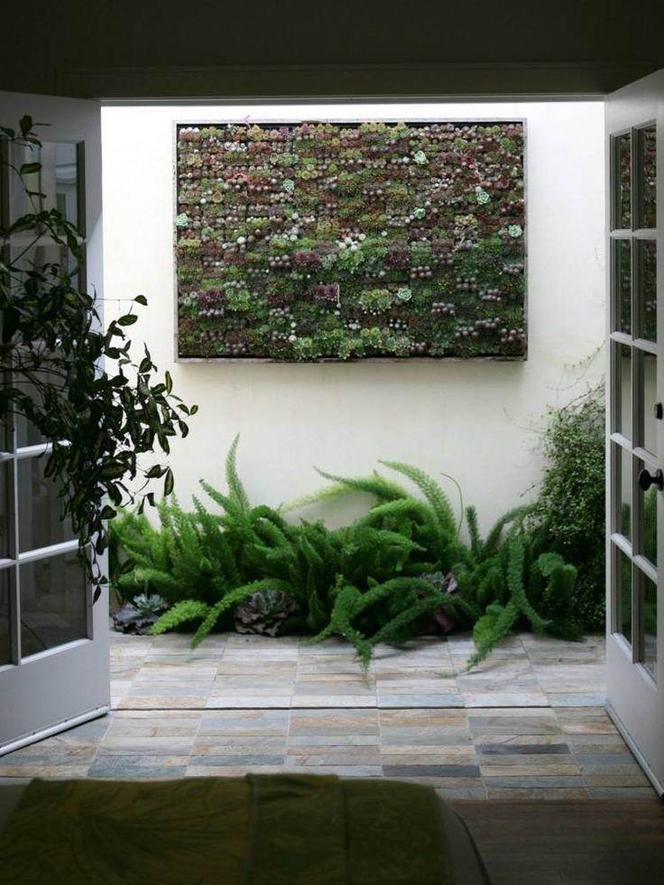 mur végétal avec plantes succulentes et fougères