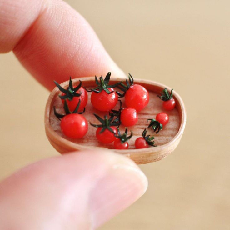 """1,292 mentions J'aime, 12 commentaires - Tomoko Misumi (@tomoko_misumi_tchaiko) sur Instagram : """"ミニトマト。6分の1、8分の1、12分の1。お弁当用に作りました #miniature #miniaturefood #handmade #minitomato #ミニチュア…"""""""